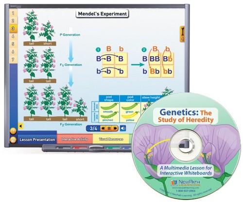 Genetics Multimedia Lesson (Site License)