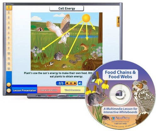 Food Chains Multimedia Lesson (Site License)