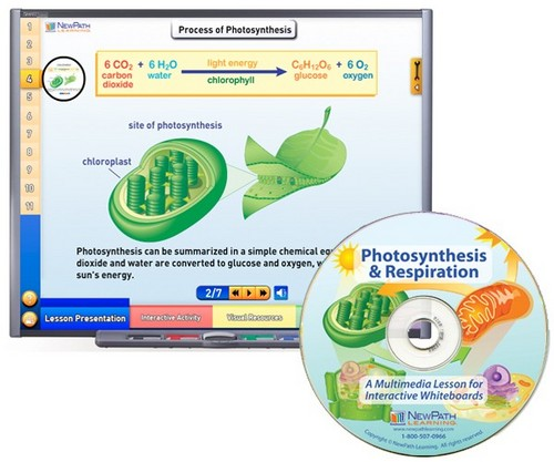 Photosynthesis Multimedia Lesson (Site License)