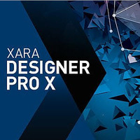 Designer Pro X365 Premium (Electronic Software Delivery)