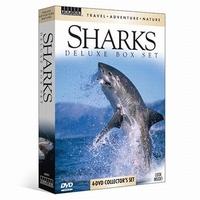 Travel - Adventure - Nature - Sharks (DVD)