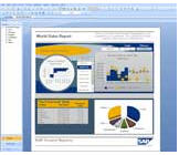 Crystal Reports 2011 Win License 1+ (Electronic Software Delivery)