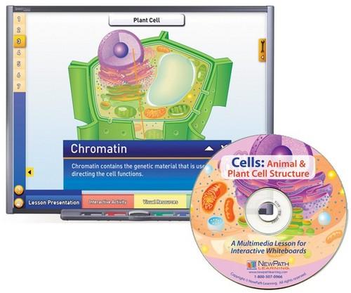 Cells Multimedia Lesson (Site License)