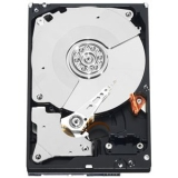 "500GB Caviar Black 3.5"" Internal Hard Drive SATA 7200RPM"