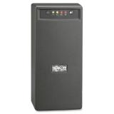 OMNIVS1000 1000VA UPS System