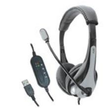 AE-39 Headset with USB Plug (Black/Gray)
