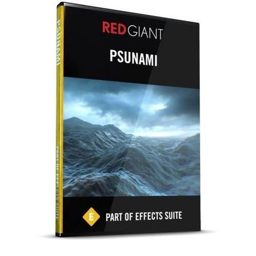 Psunami (Electronic Software Download)