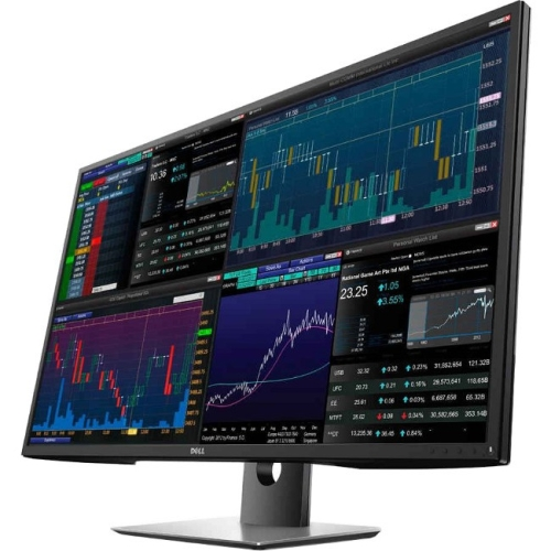 24IN MONITOR P2417H