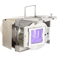 RLC-096 PROJECTOR REPLACEMENT