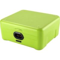 IBOX Biometric Storage Green