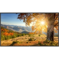 75IN LED LCD PUBLIC DISP MNTR