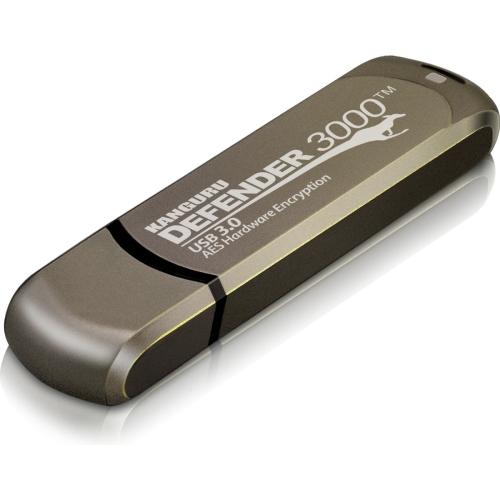 4GB DEFENDER 3000 FLASH DRIVE