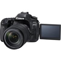 EOS 80D W EF S18 135mm f3.5