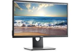 23 Inch Monitor - P2317H