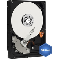 500GB SATA 5.4K RPM 3.5IN BLUE