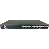 24PORT GIGABIT L2 SWITCH W/