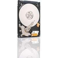 250GB SATA 3G 5.4K RPM 16MB