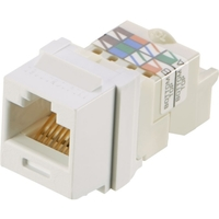 NETKEY CAT6 8POSITION 8WIRE WHT